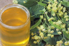 Honey from the flowers of linden Stock Image