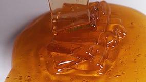 Honey Flowing, stock videobeelden