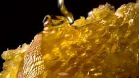 Honey flowing on honey comb. Healthy food concept. Close up. 4K UHD video stock footage