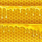 honey flowing motion, honey trickling down, isolated vector Stock Photo