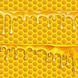Honey flowing, in motion, honey trickling down, isolated vector Royalty Free Stock Photos