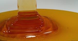 Honey flowing stock footage