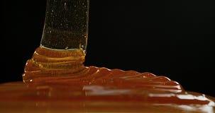 Honey Flowing tegen Zwarte Achtergrond, stock videobeelden