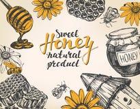 Honey frame. Design elements set. Detailed engraved. Vintage hand drawn vector illustration realistic sketch. Stock Photo