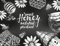Honey frame drawn with chalk on blackboard. Design elements set. Detailed engraved. Vintage hand drawn vector stock illustration