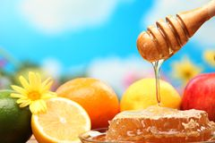 Honey and fresh fruits. Closeup stock photos