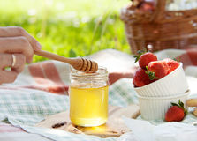 Honey and fresh strawberry served for summer picnic Royalty Free Stock Photos
