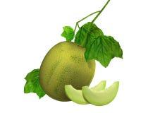 Honey fruit with cut Royalty Free Stock Photos