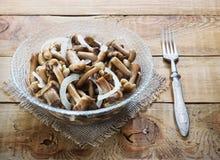 Honey Fungus adobado conservado Fotografía de archivo libre de regalías