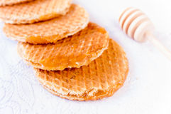 Honey galleta Royalty Free Stock Images
