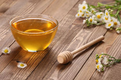 Honey in a glass bowl royalty free stock photography