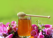 Honey in glass jar and flowers Royalty Free Stock Image