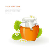 Honey in glass jar and flowers. On white background Royalty Free Stock Image