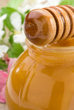 Honey in glass jar and stick with blossom. Flowers Royalty Free Stock Image