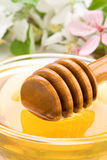 Honey in glass jar and stick with blossom. Flowers Royalty Free Stock Images