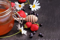 Honey glass,wooden dipper,berries Stock Images