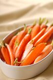 Honey glazed carrots in a serving dish Stock Images