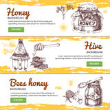 Honey Hand Drawn Banners Set Photos libres de droits