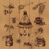 Honey Hand Drawn Illustration Royalty Free Stock Photos