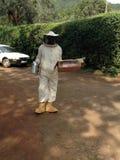 Honey harvesting Stock Photography