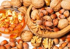 Honey with hazelnuts and walnuts Stock Photography