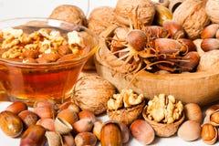 Honey with hazelnuts and walnuts Stock Photos