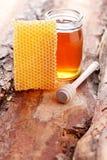 Honey with honey comb Royalty Free Stock Photography