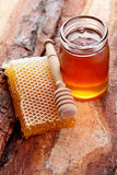 Honey with honey comb Stock Images