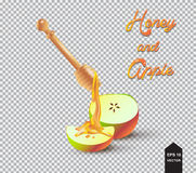 Honey, Honey dipper and apple. Honey dipper and half apple. Bee Honey dripping from wooden honey dipper and apple, half apple,  on transparent background Royalty Free Stock Photos