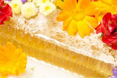 Honey. And a comb with the spring flowers close up royalty free stock images