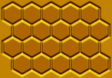Honey honeycomb Stock Image