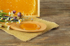 Honey and honeycomb Royalty Free Stock Images