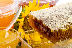 Honey and honeycomb Royalty Free Stock Image
