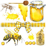 Honey, honeycomb, honey bee. Set for design label products from honey. Watercolor illustration Royalty Free Stock Image