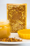 Honey, honeycomb and pollen on a plate on a white background Royalty Free Stock Images