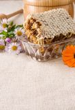 Honey, honeycomb in pot, stick and flowers on sack Stock Images