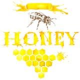 Honey, honeycomb, sweet bee. Watercolor Stock Image