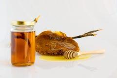 Honey with Honeycomb. Honey and Honeycomb on white background Royalty Free Stock Image