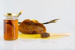 Honey with Honeycomb. Honey and Honeycomb on white background Stock Image