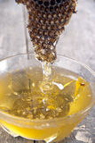 Honey and honeycomb on the wooden table. Close up royalty free stock images