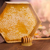 Honey with honeycomb on wooden table Royalty Free Stock Photos
