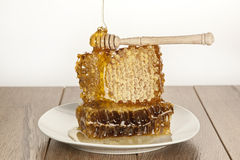 Honey with honeycomb on wooden table. Honey on wooden table white background Stock Photos