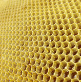 Honey in honeycombs Royalty Free Stock Photos