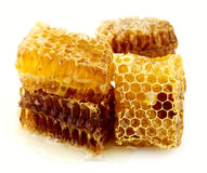 Honey honeycombs Stock Image