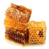 Honey honeycombs Stock Photography