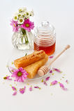 Honey. With combs and flowers Royalty Free Stock Photo