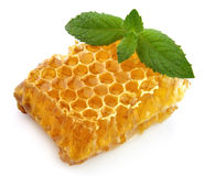 Honey honeycombs with mint Stock Photography