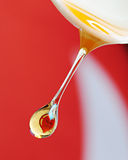 Honey I Love You. High speed photography. A baby soft edge spoon and filtered honey boil to require viscosity to get elongated drip shot Stock Photos
