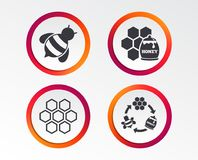 Honey icon. Honeycomb cells with bees symbol. Sweet natural food signs. Infographic design buttons. Circle templates. Vector stock illustration