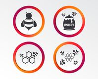 Honey icon. Honeycomb cells with bees symbol. Sweet natural food signs. Infographic design buttons. Circle templates. Vector vector illustration